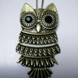 Wise Owl Pendant Necklace Brooch pin